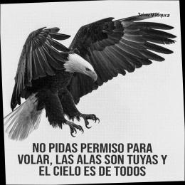 No pidas permiso para volar, las alas son tuyas y el cielo es de todos