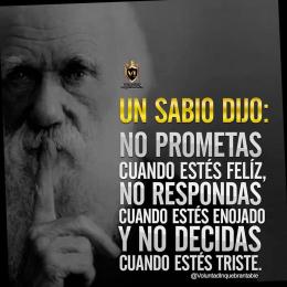 Un sabio dijo No prometas cuando estés feliz, no respondas cuando estés enojado y no decidas cuando estés triste