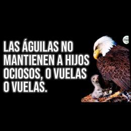 Las águilas no mantienen a hijos ociosos o vuelas o vuelas
