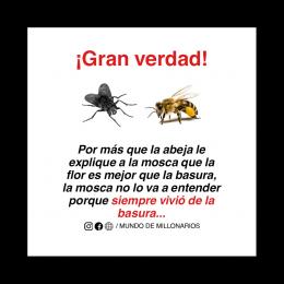 La abeja y la mosca