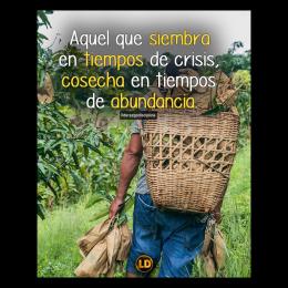 Aquel que siembra en tiempos de crisis, cosecha en tiempos de abundancia