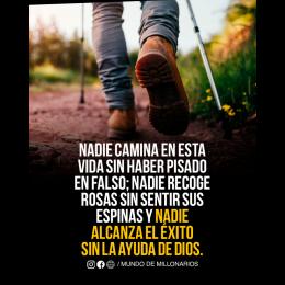 Nadie camina en esta vida sin haber pisado en falso, nadie recoge rosas sin sentir sus espinas y nadie alcanza el éxito sin la ayuda de Di-s