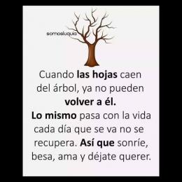 Cuando las hojas caen del árbol, ya no pueden volver a él. Lo mismo pasa con la vida cada día que se va no se recupera así que sonrie, besa ama y déjate querer