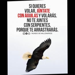 Si quieres volar, júntate con águilas y volarás. No te juntes con serpientes, porque te arrastrarás copia
