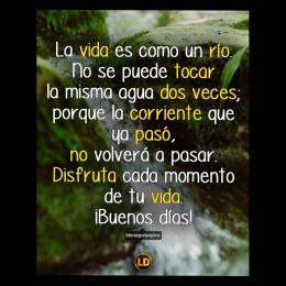La vida es como un río, no se puede tocar la misma agua dos veces, porque la corriente que ya pasó no volverá a pasar. Disfruta cada momento de tu vida, buenos días copia
