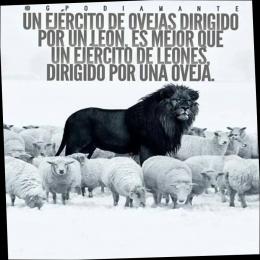 Un ejército de ovejas dirigido por un león, es mejor que un ejército de leones dirigido por una oveja